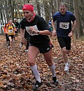 20101120_cross_ifs_coline1_600x500