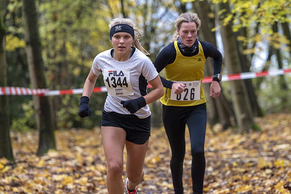 Göttinger Cross Serie - 1. Lauf am 16.11.2019
